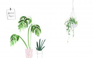 pot plant wallpaper